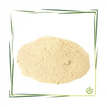 Lysolecithin Pulver NGM 10 g