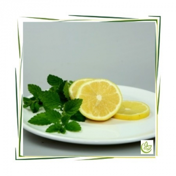 Parfümöl Lemon Verbena 500 ml